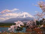 Fuji-san in Spring