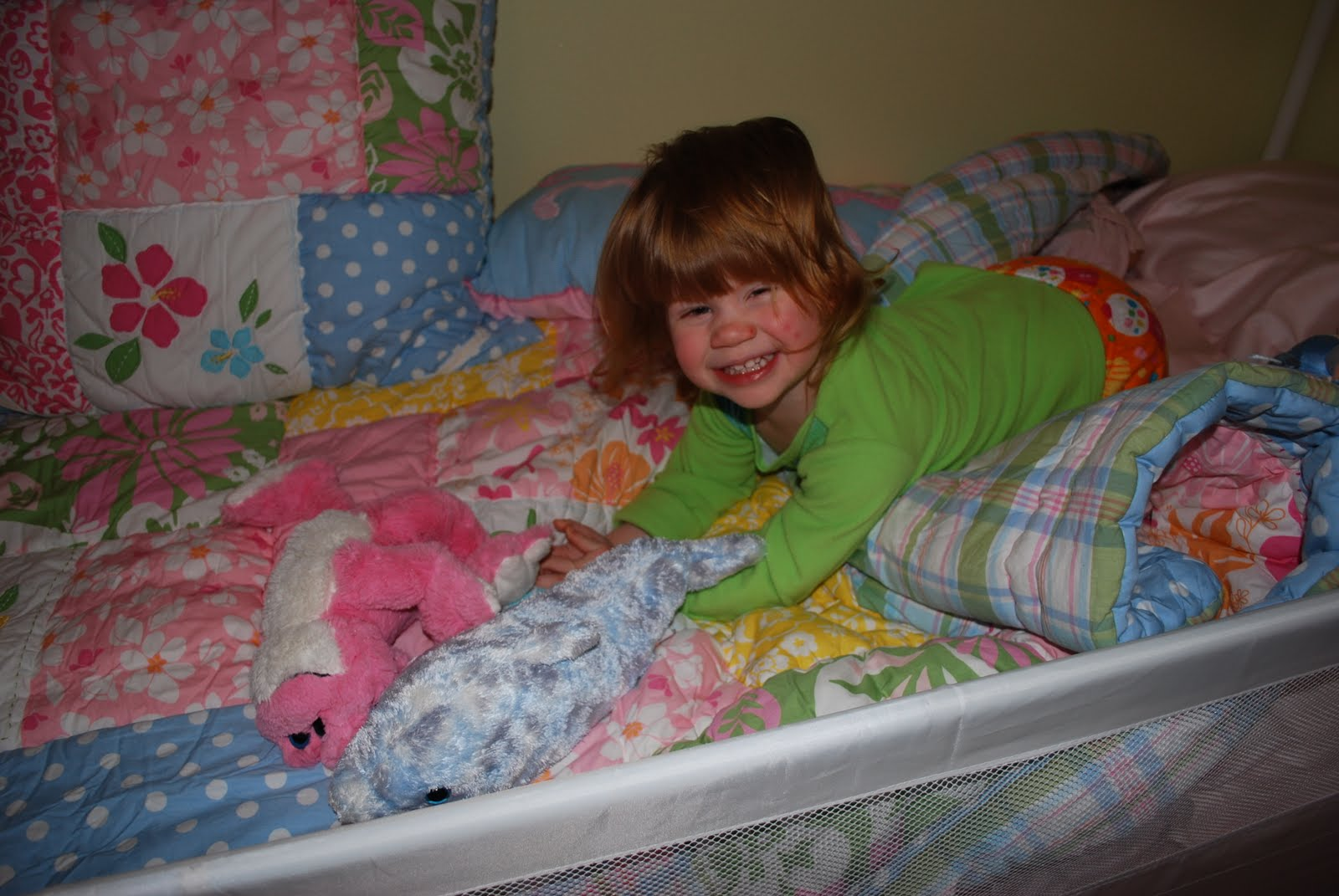 Big Girl Bed Images