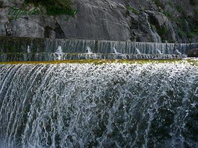 Sabías que el agua es la sustancia más abundante?(entra)