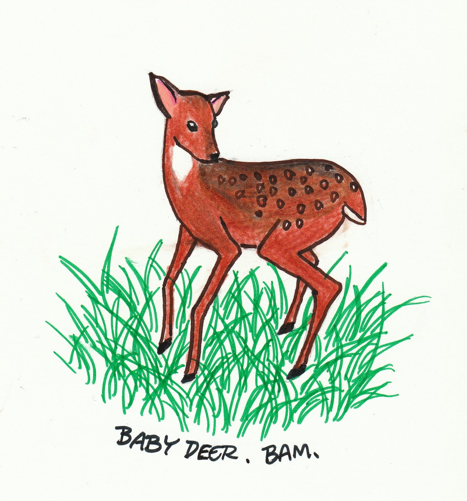 [Bambi?]
