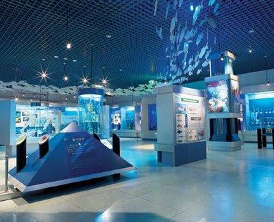 Il museo di storia naturale di Dalian