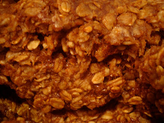 Up close of Vegan Gluten & Soy-Free Granola
