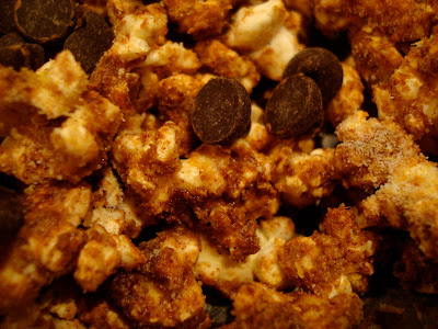 Chocolate Coconut Oil Protein Popcorn with chocolate chips