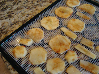 Sliced apples with agave and cinnamon on dehydrator tray