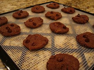 Finished Raw Vegan Chocolate Chocolate-Chip Cookies on dehydrator tray