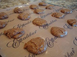 Raw Vegan Gingerbread Cookie dough on dehydrator tray
