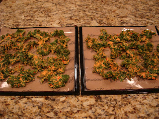Mixed up kale and blended mixture placed on lined dehydrator tray