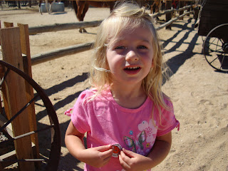 Young girl in pink shirt at pumpkin patch