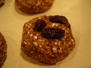 Close up of one Raw Vegan Oatmeal Raisin Cookie