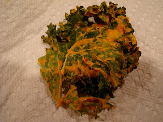 Close up of one Kale Chip