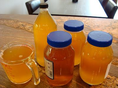 Bottled up Kombucha