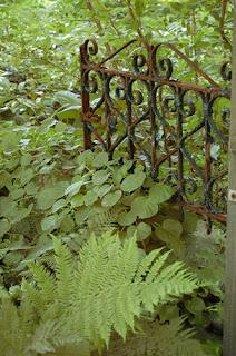 rusted garden gate along overgrown path