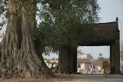 Cổng làng Mông Phụ, Đường Lâm