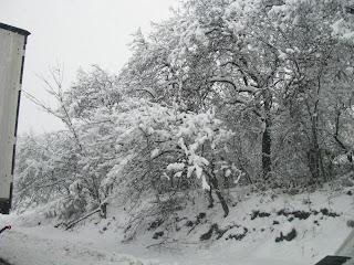 peisaj iarna/winter