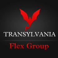 Transylvania Flex Group