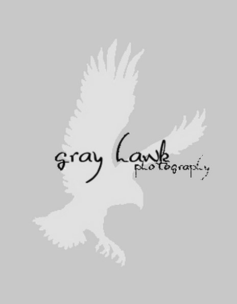 Gray Hawk Photography