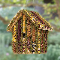 edible bird house