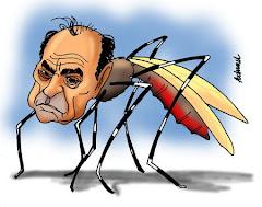 Retrato da dengue no Rio - Sem comentários...