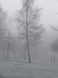 kelvingrove mist copyright kerry dexterh