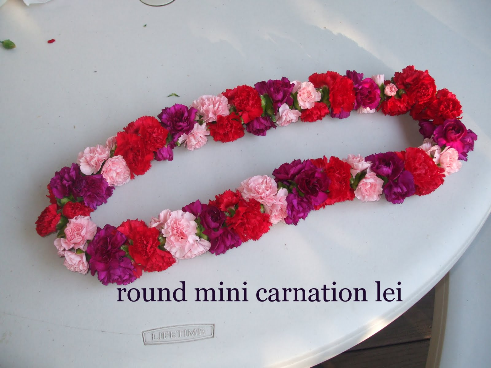 Keiki on board high school graduation now with leis the other problem was that fresh flowers the kind that make good leis arent readily available in oregon but i lucked out with the mini carnation izmirmasajfo