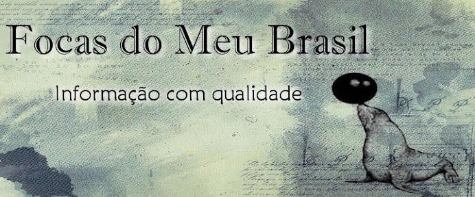 Focas do Meu Brasil
