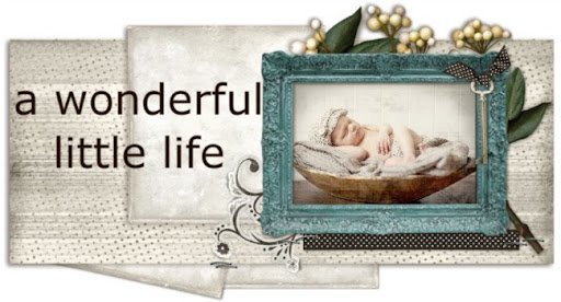 a wonderful little life