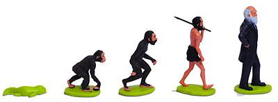 muñecos sobre la evolución
