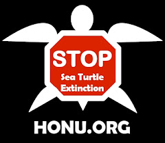 Stop Sea Turtle Extinction