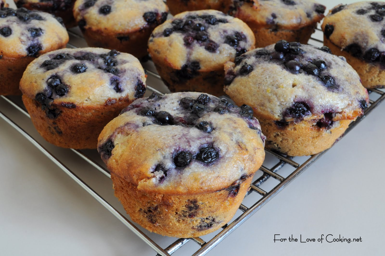 Lemon-Blueberry Muffins Recipes — Dishmaps