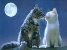 O Amor... Tem coisa mais linda?