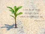 I can do all things through Christ which strengtheneth me.  Phil 4:13