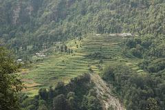 My Village Jhenji {मेरा गाँव झींझी}