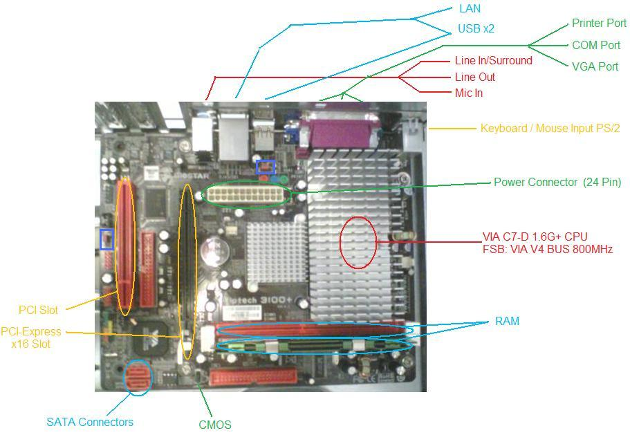 Motherboard Graph With Labels on Motherboards Fully Labeled