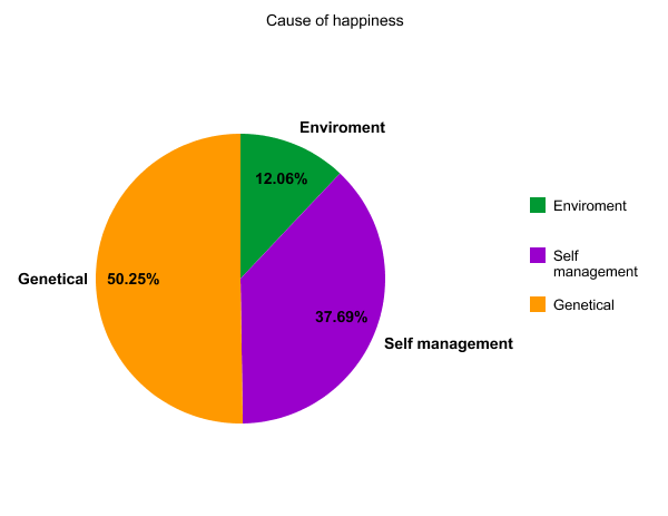 causes of happiness Happiness essayswatching the sun rise, getting a raise, putting a smile on someone's face these are all examples of when a person may feel a happy they are all diverse, just like the individual's in the world.