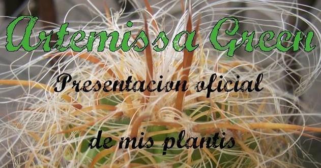 artemissa green