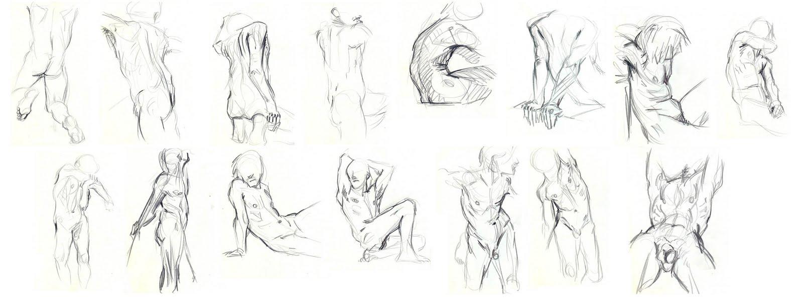 Amanda y la Internet...: Practicando el torso masculino