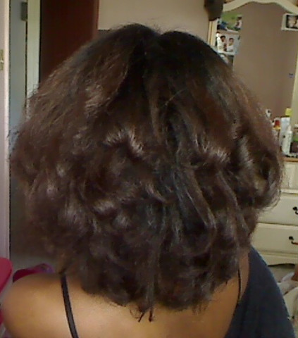 Protein Conditioners For Black Hair African American Protein 2015 ...