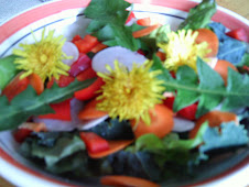 Salad with Dandelions