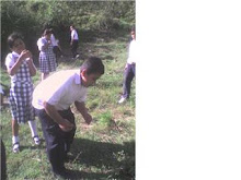 """Observacion de la Planta mas llamativa por los niños """"La Dormilona"""""""