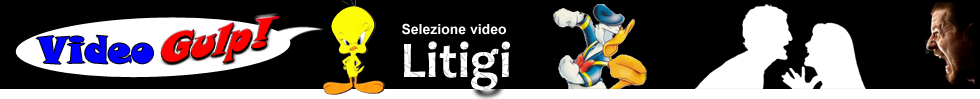 VIDEO GULP - VIDEO LITI RISSE E LITIGATE TV - selezione video YouTube