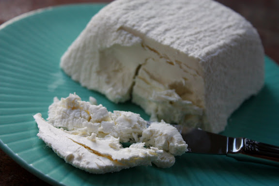 how to make homemade goat cheese