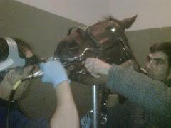 El Cigala visita al dentista