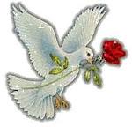 Que a paz habite no coração de quem me visita