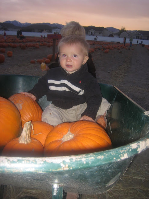 Cute pumpkins and baby