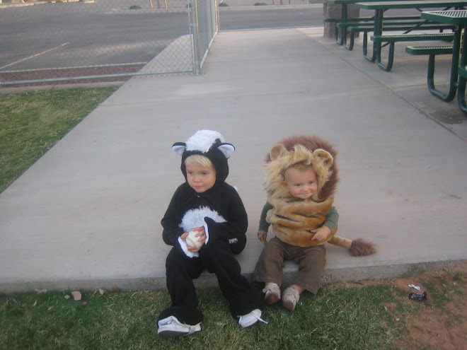 My little stinker and cute little lion