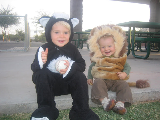 I loved these cute outfits.  Thanks to Melanie I got to have two little animals!