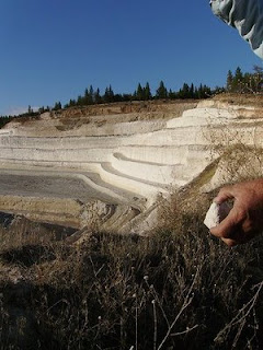diatomaceous earth mine