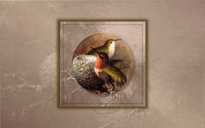 http://tocjan.blogspot.com/2009/04/hummingbirds.html