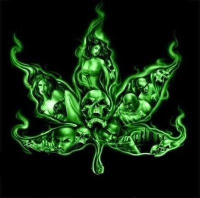 efectos de la marihuana. efectos de la marihuana.