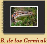 Barranco de Los Cernicalos